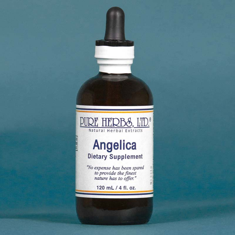 Angelica Extract  4 fl. oz.