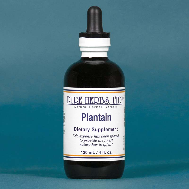 Plantain Extract  4 fl. oz.